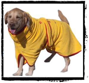 ADsurfdogrobe